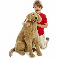 Golden Retriever - Plush