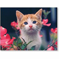 0030 pc Curious Kitten Cardboard Jigsaw