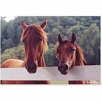 100 pc Horse Corral Cardboard Jigsaw Puzzle