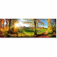 1000 pc Meadow Sunrise Cardboard Jigsaw
