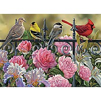 Birds On A Fence - 1000 pc