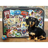 Dachshund 'round the World - 500 Pieces