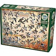 1000 pc Ducks Of North America