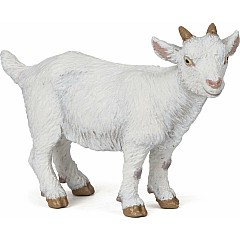 White Kid Goat
