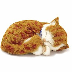 Perfect Petzzz Orange Tabby Cat
