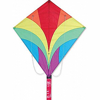 Ace Sport Kite - Rainbow