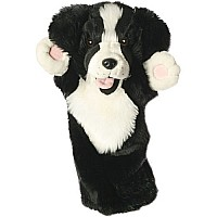 Long Sleeves - Border Collie