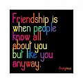 Friendship - Anonymous Color Magnet
