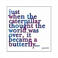 Just When The Caterpillar Thought The World Was Over. Color Magnet