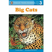 Big Cats Level 3 Reader
