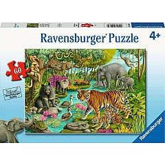 Animals Of India - 60 Piece