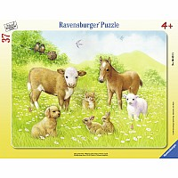 In the Pasture 37 pc Tray Puzzle