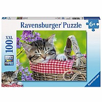 0100 Piece Puzzle Sleeping Kitten