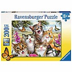 Friendly Felines Puzzle