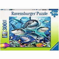 300 Piece Puzzle, Smiling Sharks