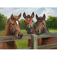 Ravensburger 'Equine Meeting' 500 piece 14566