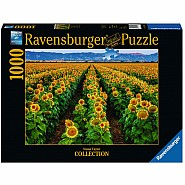 RAVENSBURGER 1000pc Puzzle -Fields of Gold