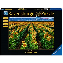 1000pc Puzzle - Fields of Gold