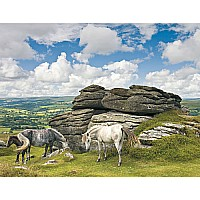 Ravensburger 'Horses in Dartmoor National Park' 2000 piece 166