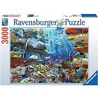 3000 pc Oceanic Wonders