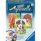 Aquarelle Puppies