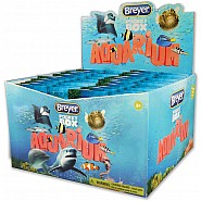 Pocket Box Aquarium Each