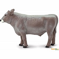 Brown Swiss Bull