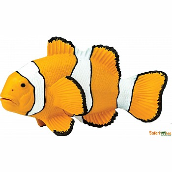 Clown Anemonefish  Figurine