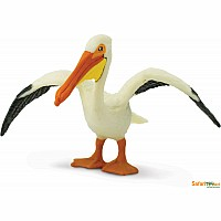 Bird White Pelican