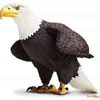 Incredible Creature Bald Eagle