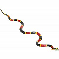 Coral Snake 23 Inch