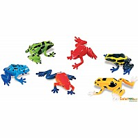 Mini Poison Dart Frogs (.59 each)