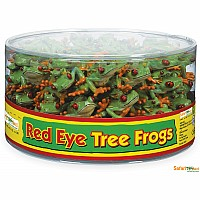 Red Eye Tree Frogs in Bin ($0.95 pc)
