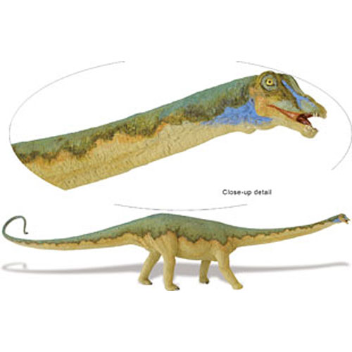 Carnegie Dinosaur Collection Diplodocus - Stevensons Toys f703f03067b7