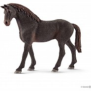 English Thoroughbred Stallion