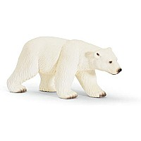 Polar Bear, Female