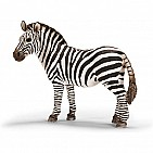 Zebra Female
