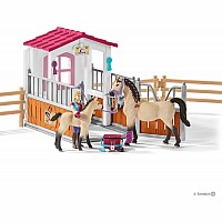 Horse Stall With Arab Horses And Groom