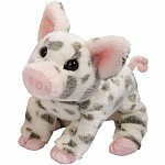 Douglas Pauline the Spotted Pig - Small