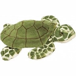 Douglas Toti Sea Turtle
