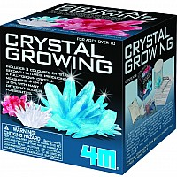 Crystal Growing Kit - single