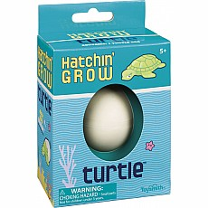 Hatchin Grow Turtle