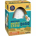 Ginormous Grow Dino Egg