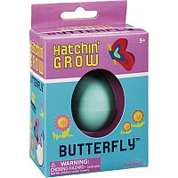 HATCHIN GROW BUTTERFLY