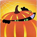 Halloween Greeting Card Pop-Up Pumpkin Cat