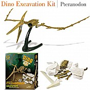 Dino Excavation Kit Petranodon Skeleton