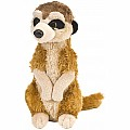 Meerkat Stuffed Animal - 8""