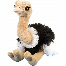 Ostrich Stuffed Animal - 12""