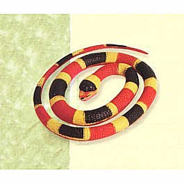 Rubber Coral Snake